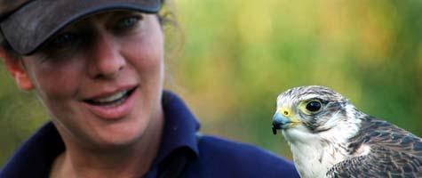Nina Markx van Birds@Work met valk